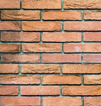 Стеновая панель из МДФ с фотопечатью, FR-24