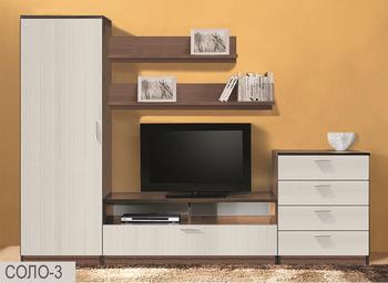Стенка Соло вариант 3 - Боровичи мебель
