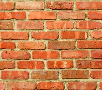 Стеновая панель из МДФ с фотопечатью, SP-113
