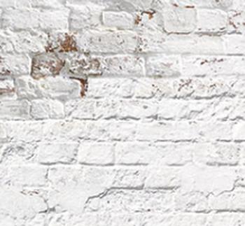 Стеновая панель из МДФ с фотопечатью, SP-291
